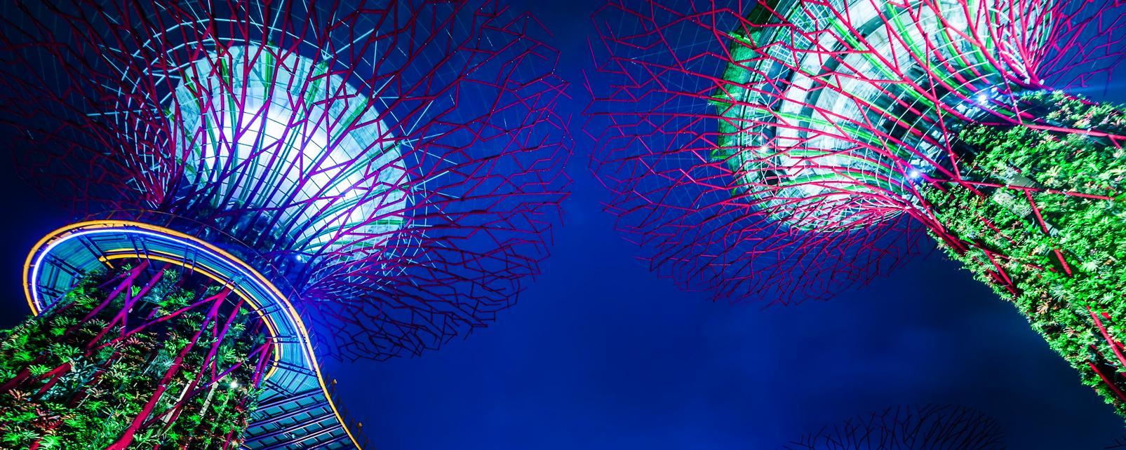Asie, Singapour, Parc, Gardens by the Bay, arbre, hôtel,