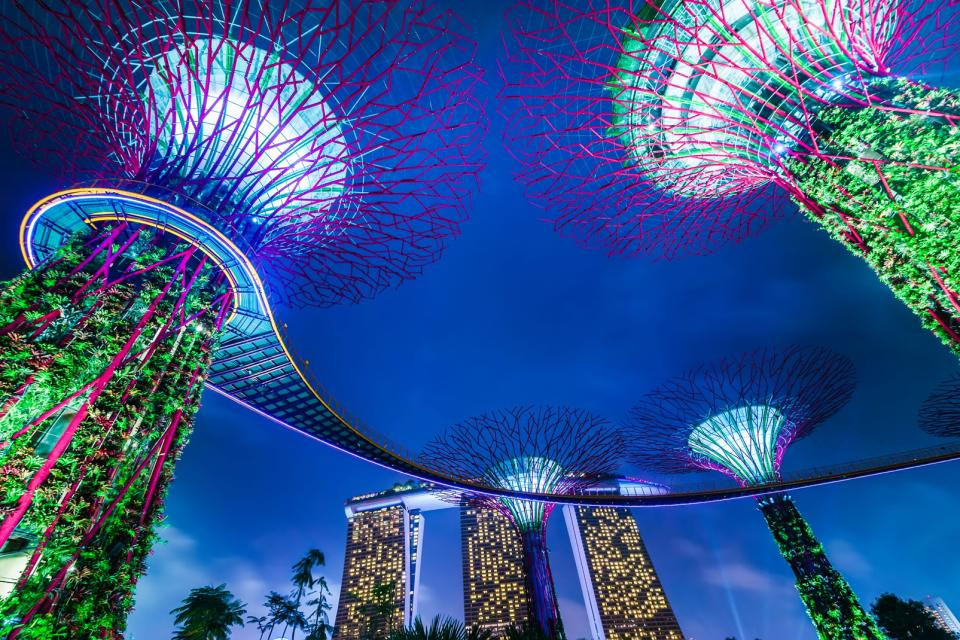 Asie, Singapour, Parc, Gardens by the Bay, arbre, hôtel,