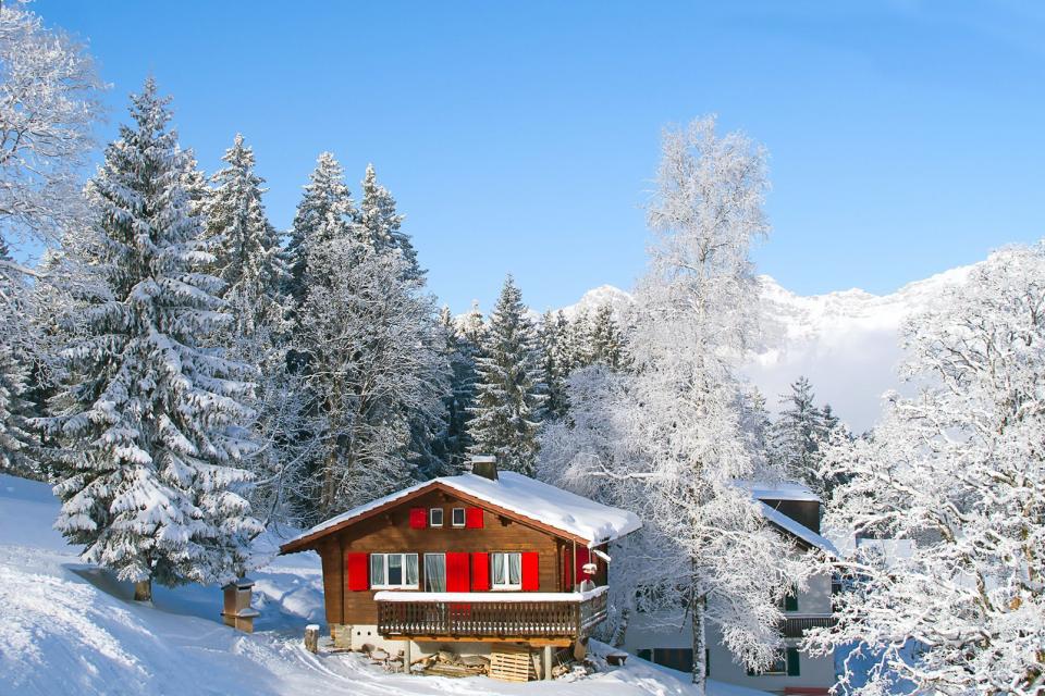 Europe, Suisse, Alpes, châlet, forêt, sapin, neige, montagne,