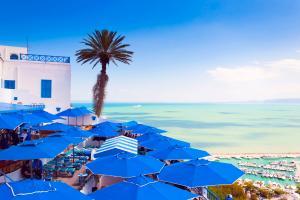 Afrique, Tunisie, Sidi Bou Said, ville, parasol, arbre, bateau, terrasse,