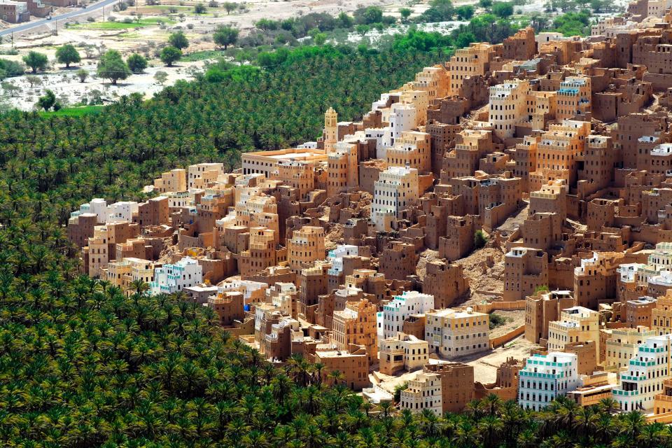 Moyen-Orient, Yémen, Seiyun, ville, Hadramaout, immeuble, habitation, forêt, arbre,