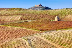 Europe, Espagne, La Rioja, château, Davalillo, vignoble, vigne, vin,