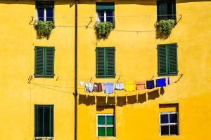Europe, France, Provence Alpes Côte d'Azur, immeuble, fenêtre, plante, vêtement, façade,