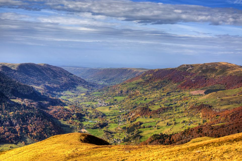 Europe, France, Auvergne, vallée, volcanique, massif central, montagne, arbre,
