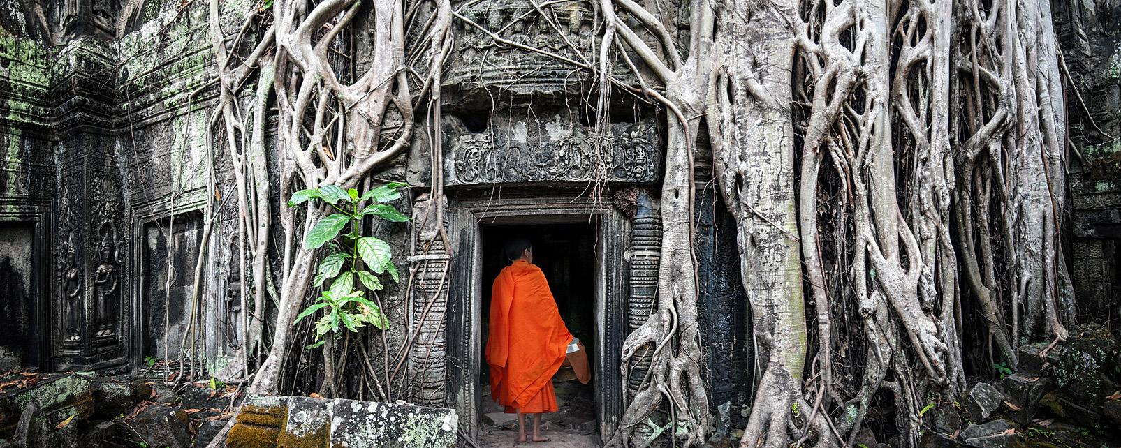 Asie, Cambodge, Angkor Wat, temple, Ta Prohm Khmer, moine, bouddhiste, forêt, jungle,