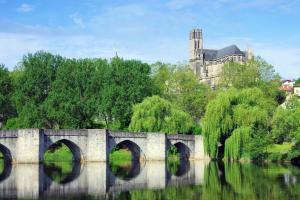 Europe, France, Limousin, Limoges, pont, rivière, Vienne, cathédrale, arbre,