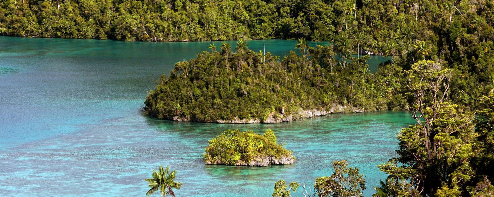 Asie, Indonésie, Papouasie occidentale, Rajat Ampat,