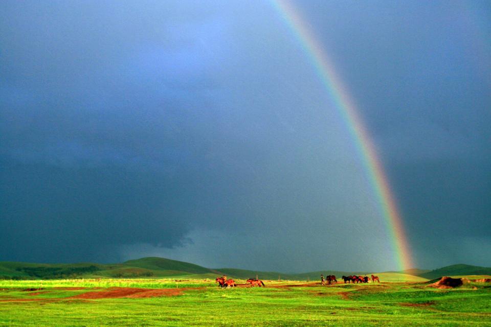 Asie, Chine, Mongolie intérieure, cheval, arc en ciel, prairie,