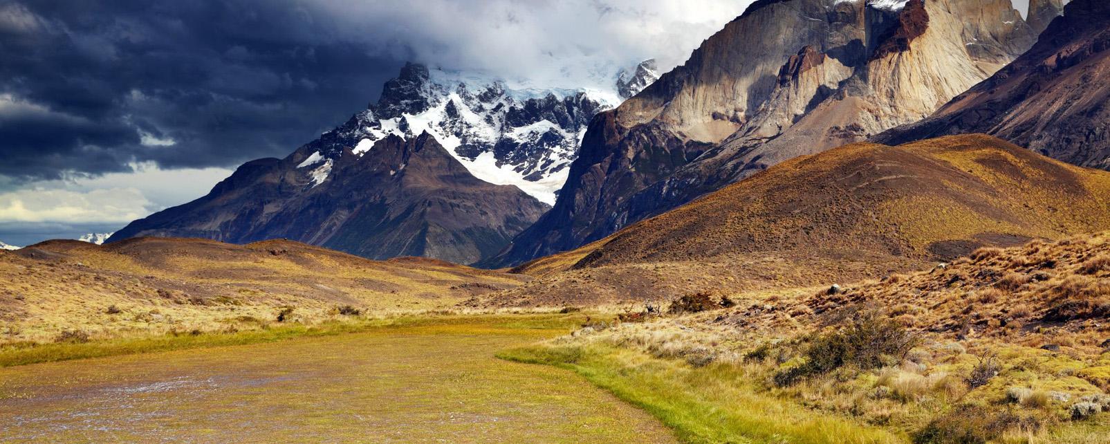 Amérique, Amérique du Sud, Chili, Patagonie, Torres del Paine, montagne, prairie, lama, neige,