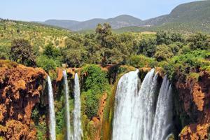 Afrique, Maroc, Azilal, Grand Atlas, Tanaghmeilt, cascade, Ouzoud, chute, arbre, montagne,