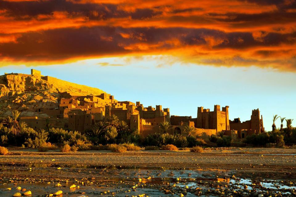 Afrique, Maroc, vallée, Dadès, village, maison, arbre,
