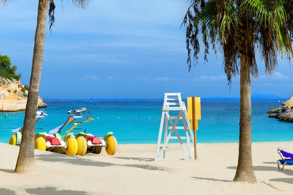 Europe, Espagne, Baléares, plage, arbre, sable, détente, baignade, sable, mer,