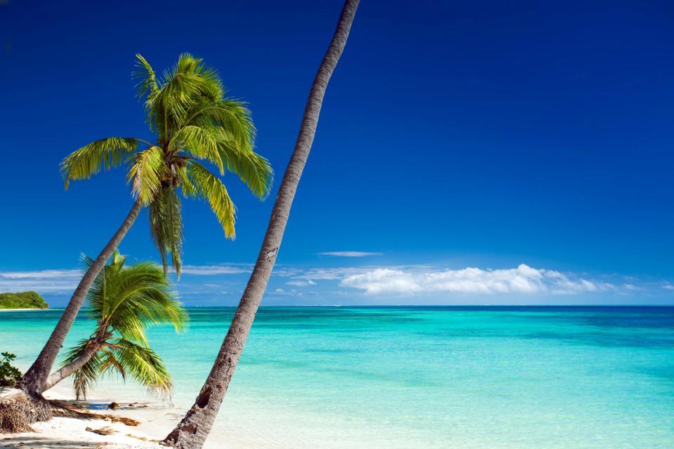 Océanie, Fidji, plage, baignade, île, sable, océan, mer, palmier,