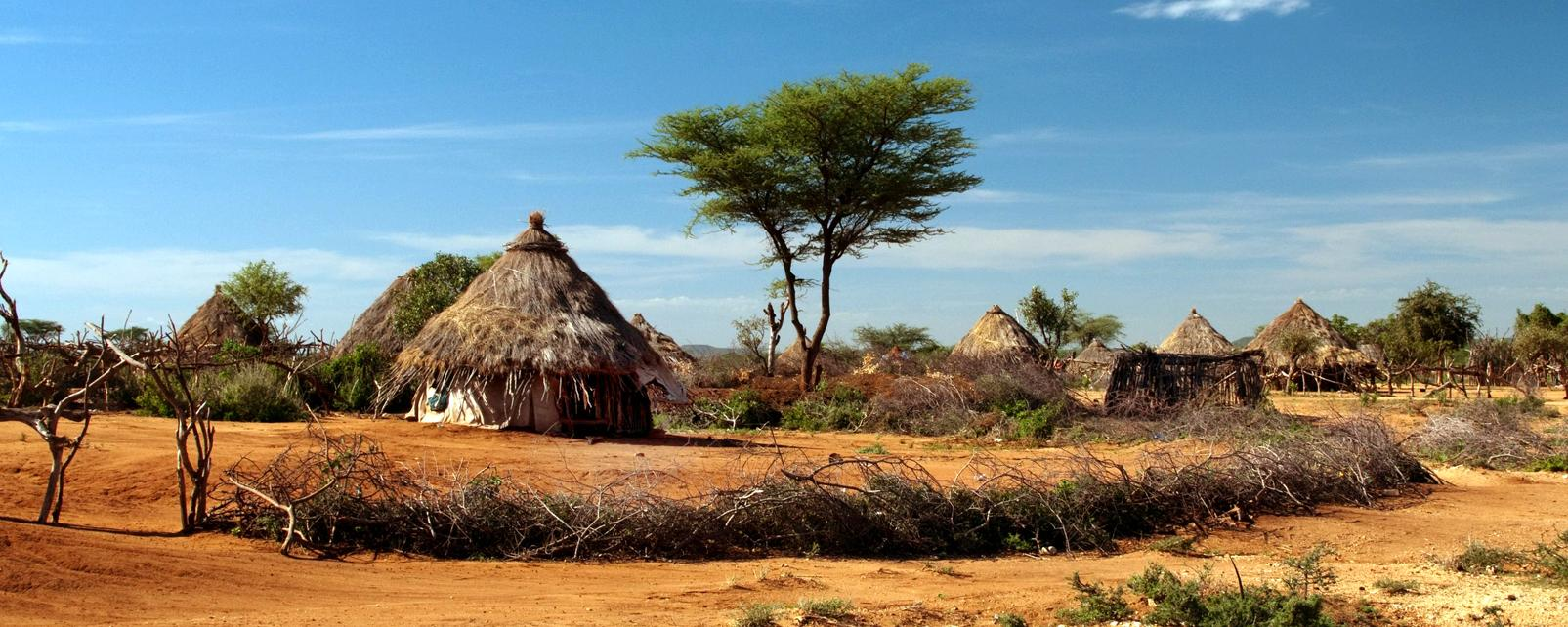 Afrique, Guinée équatoriale, village, hutte, arbre, savane, tribal,