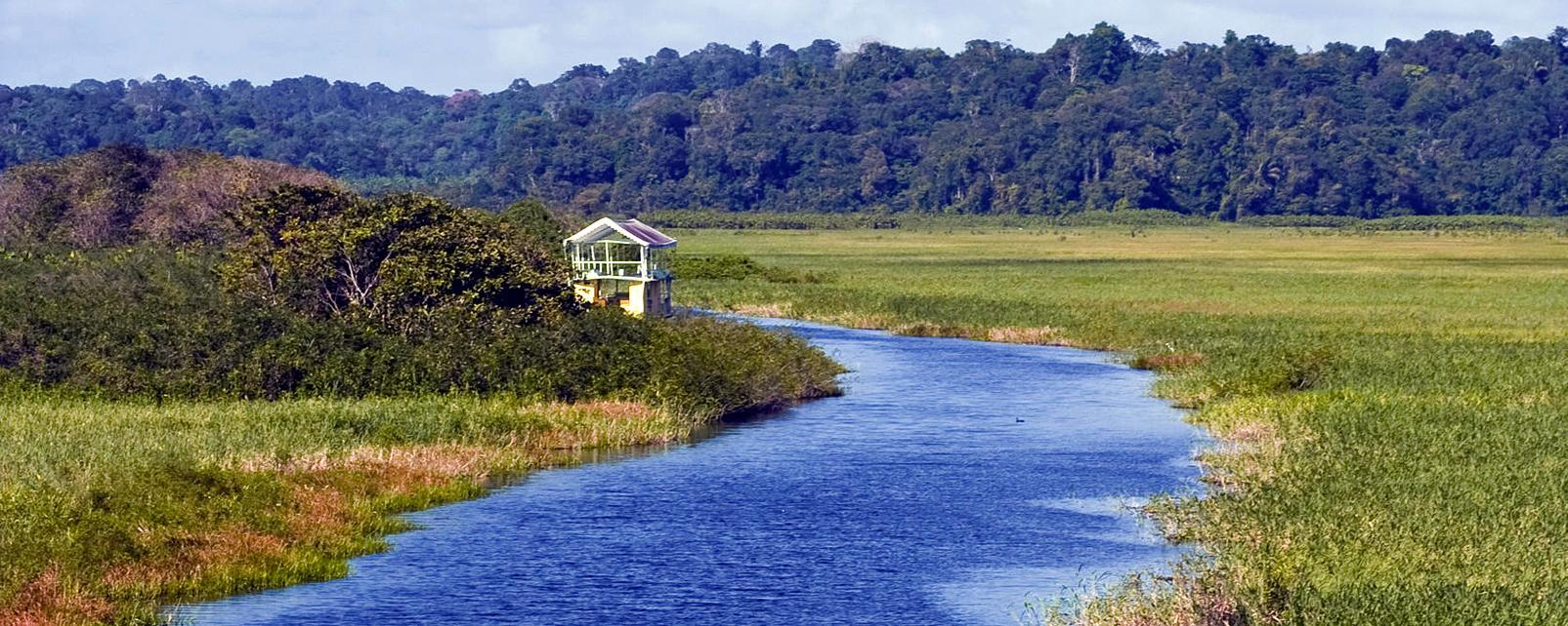 Que Faire Guyane Meilleures Attractions Touristiques