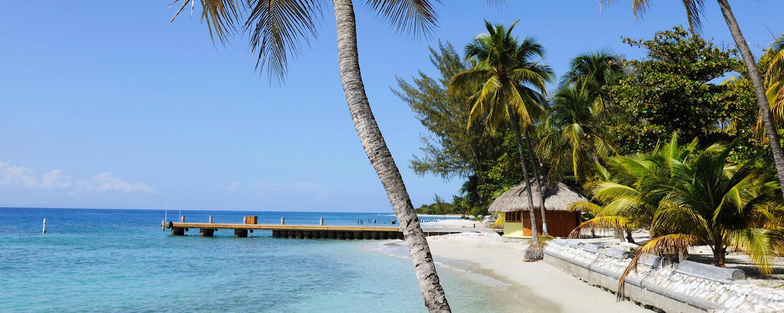Caraïbes, Haïti, Haiti, plage, baignade, hutte, passerelle, sable, mer, palmier,