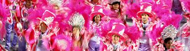 Karneval mit Michel Telo -Sehensw�rdigkeiten in Rio De Janeiro