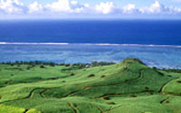 Recorrido verde por el Océano Índico