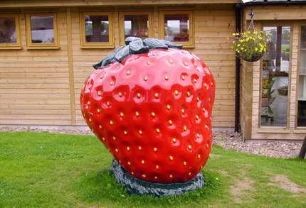 Una impresionante granja de fruta