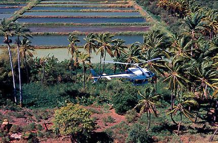 Découverte de l'île en hélicoptère