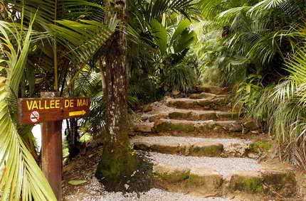 Sur les chemins de l'Eden