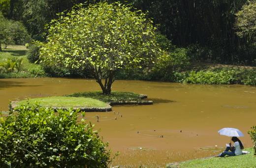 Jardín de las especias y botánico
