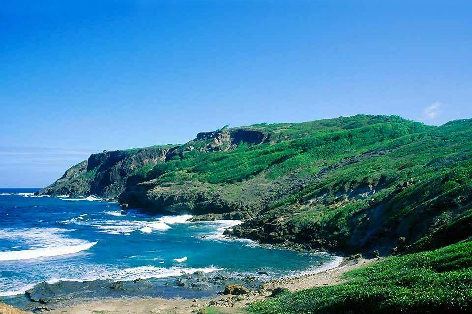 El noreste de la isla y su ciudad principal la Trinidad (bajo-prefectura martiniquesa), de hecho sólo cuenta con un balneario de menor importancia en la región de Tartane, al norte de la península de la Caravelle. El litoral ciertamente no es tan bonito como en el sur, pero encontramos algunas playas agradables en la costa norte de la península así como al norte de Sainte-Marie. En la península de ...
