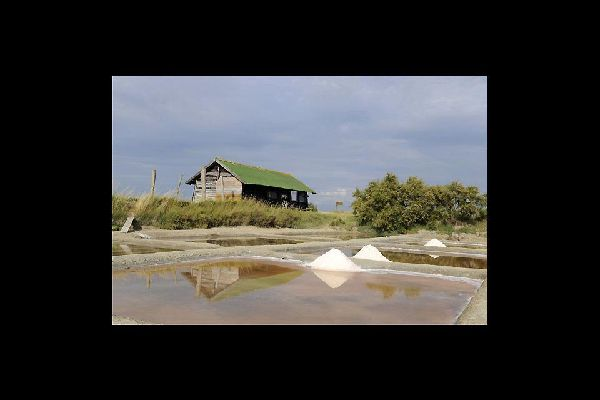 A pocos kilómetros al norte de la ciudad, las salinas son una zona natural protegida en la que podrás ver cómo los salineros extraen la sal.