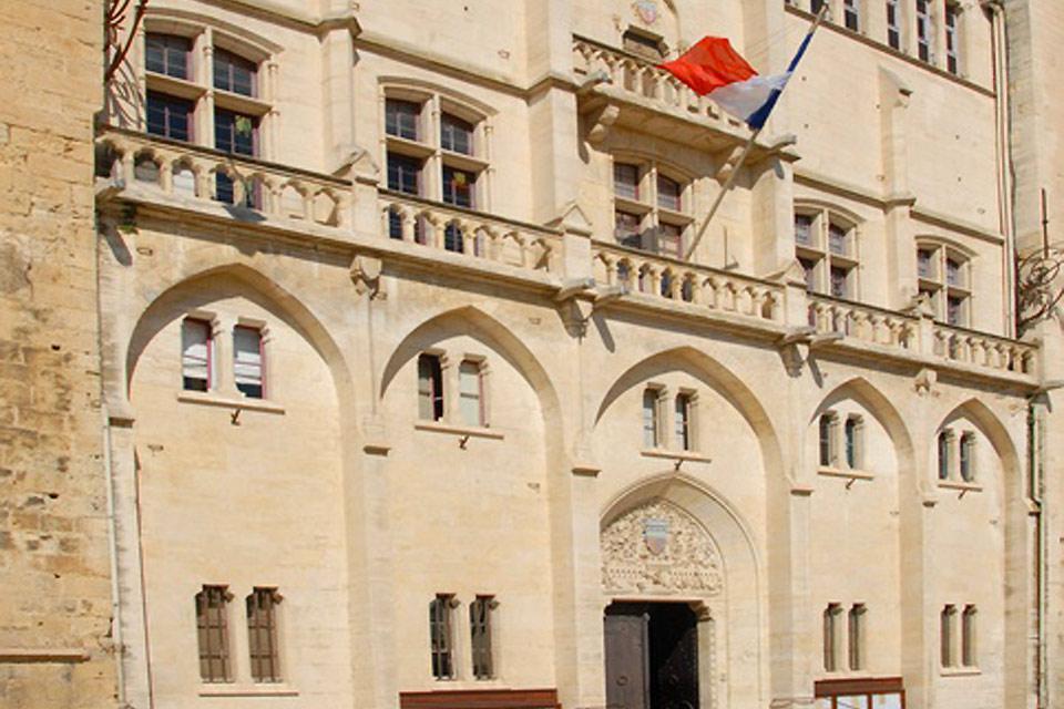 Le musée d'art et d'histoire se trouve dans le palais des archevêques de Narbonne. Le musée possède de nombreuses collections dont celle des de beaux-arts.