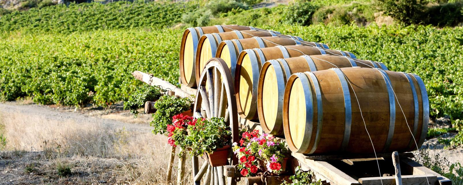 Sigean, Languedoc-Rosellon, Francia