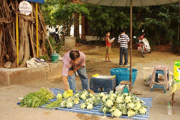 Questo mercato alimentare è organizzato al pomeriggio vicino al tempio birmano.