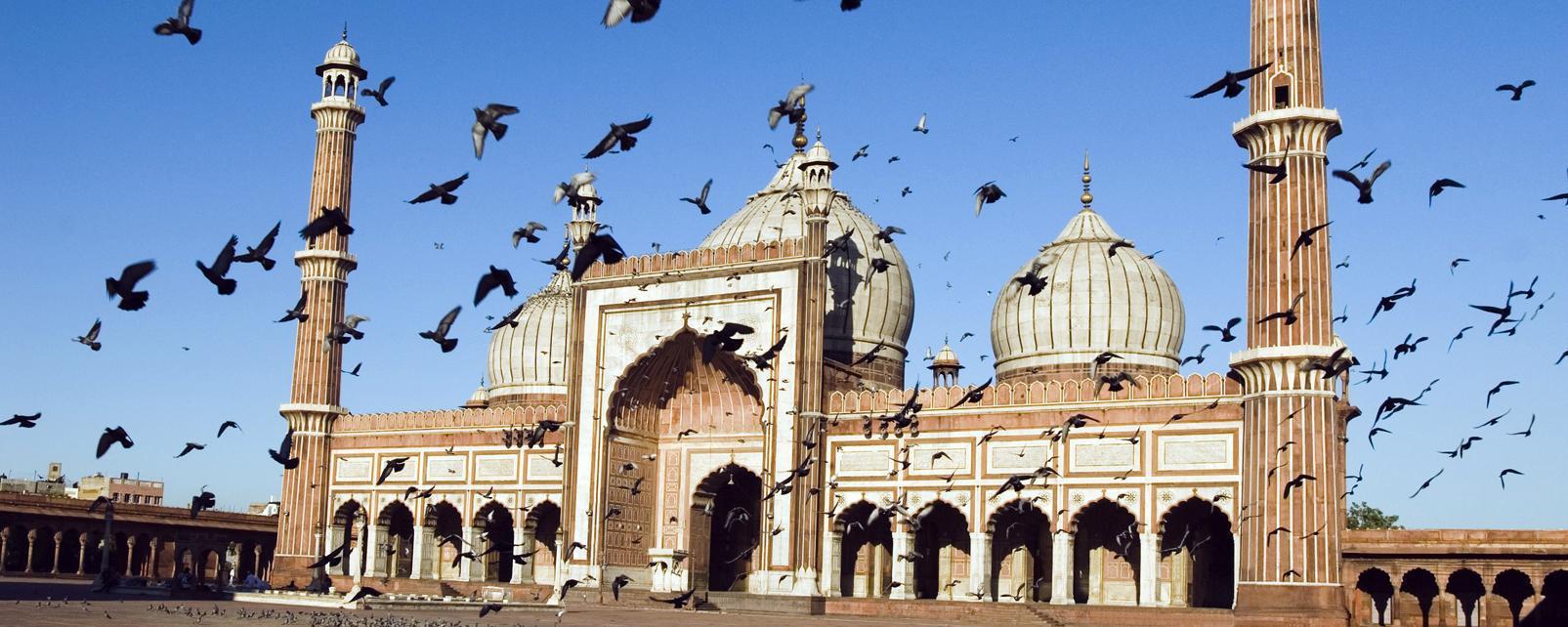 Tiempo en nueva delhi india mejor poca para viajar easyviajar - Tiempo en pakistan ...