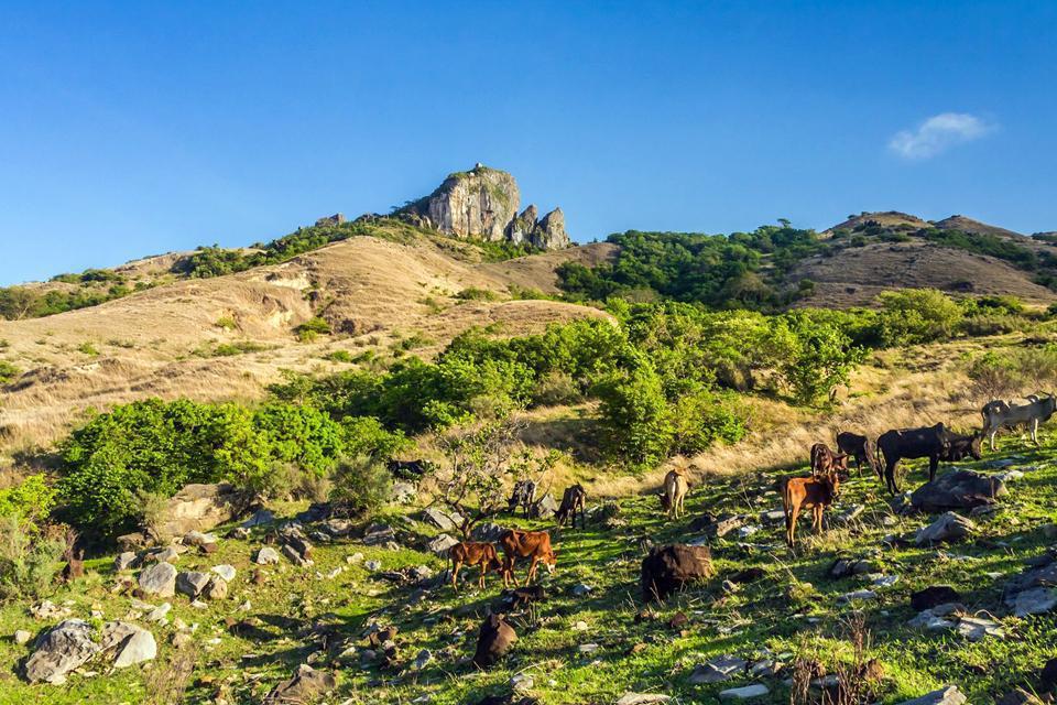 Antsiranana se conoce mejor bajo el nombre de Diego Suarez. Se trata de la ciudad más grande del norte de Madagascar. A 990km de Tananarive, Diego Suarez está al norte de Madagascar y se da a conocer por su Pan de Azúcar. Es la segunda bahía más bonita del mundo después de la de Río. Su verdadero nombre es Antsiranana lo que significa el puerto en malgache. La ciudad aún tiene su arquitectura típica ...