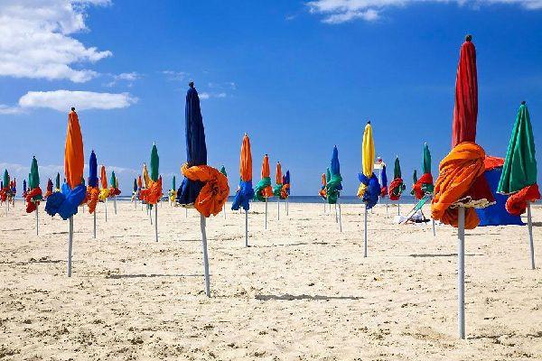 Autrefois simple petit village normand, Dosville, devenu Deauville, est aujourd'hui une station balnéaire de choix. Les amoureux de la nature l'apprécieront en arrière-saison, pour sillonner le parc Calouste Culbekian ou marcher sur les Planches en toute tranquillité... Les amateurs de strass et d'élégance préféreront la pleine saison, quand les cabanes et parasols colorés investissent la plage. Les ...