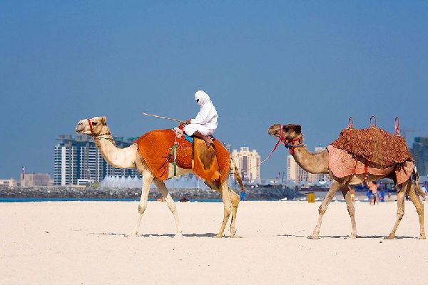 Dubai's beaches are far from the exotic beaches of the likes of Thailand or the Maldives, but they are wide and sandy.