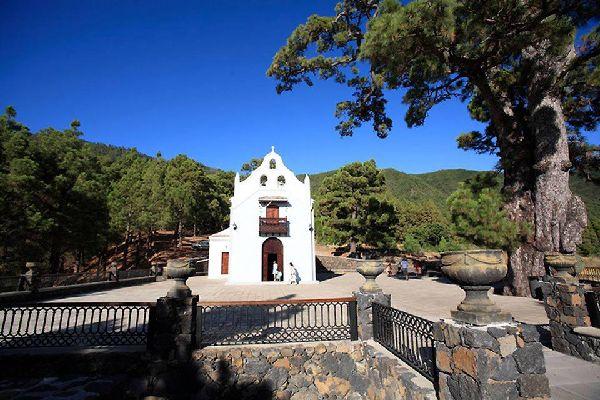 El Paso liegt im Zentrum von La Palma, in der Nähe der Caldera de Taburiente.