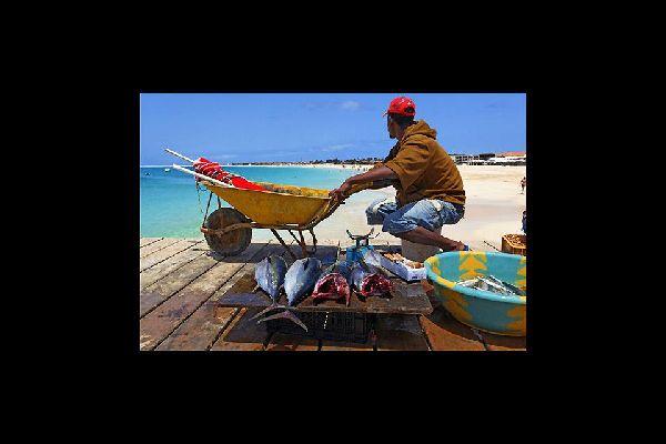 Bei der Rückkehr der Fischer am späten Vormittag herrscht ein reges Kommen und Gehen auf dem Steg vor. Die Einwohner kaufen ihren Fisch nämlich direkt vor Ort.