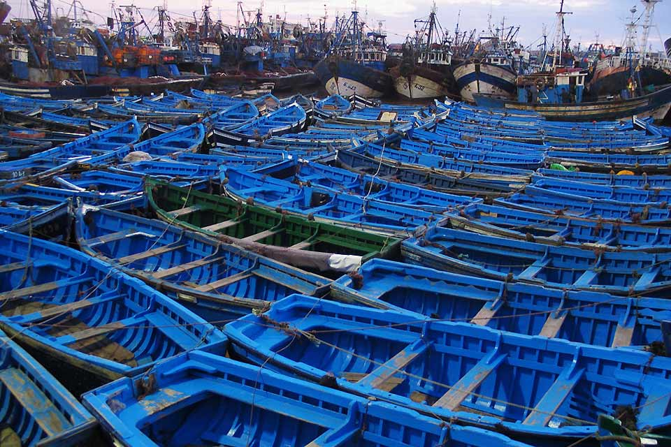 The boats in the traditional fishing port are blue to trick the sardines