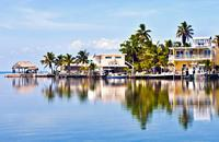 Key West est une perle à la pointe de l'archipel des Keys, entre Atlantique et golfe du Mexique. Eternisez-vous sur cette petite ville balnéaire tropicale, rendue célèbre par Ernest Hemingway. Remarquez ses demeures mélangeant les tons Art-déco à une architecture coloniale en bois....