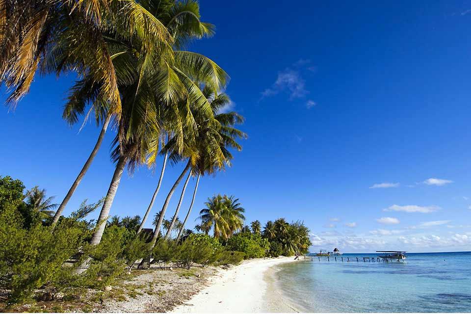 Atolón declarado reserva de biosfera por la Unesco desde 2006, Fakarava sorprende a los turistas por la inmensidad de su lago. Es tan grande que parece fundirse con el océano en el horizonte. Su color, turquesa cerca del río y azul intenso a lo lejos, procede de su profundidad: hasta 50 m en el medio (que corresponde a la base del antiguo cráter sumergido). La elipse coralina de Fakarava ocupa 28 km ...