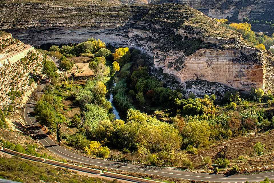 Albacete est la plus grande ville de Castilla-La Mancha en nombre d'habitants avec près de 165 000 personnes qui y vivent. Bien qu'elle soit située dans la Meseta centrale, au cœur de la région de la Mancha de Montearagón, cette ville regorge d'espaces verts tels que des places, des jardins et des parcs. L'un des plus populaires est le parc d'Abelardo Sánchez, véritable poumon de la ville qui s'étend ...
