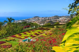 Europe; Portugal; Madère; Funchal;