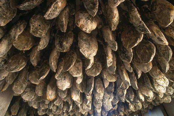 Jamón de Huelva es una Denominación de Origen Protegida reconocida por la Unión Europea.
