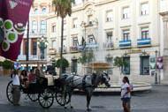 Vous pouvez assister à l'un de ces incroyables spectacles réalisés par l'École royale andalouse d'art équestre afin d'observer les merveilleux exercices de dressage des chevaux.