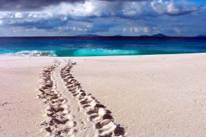 Océan Indien; Seychelles; Frégate;
