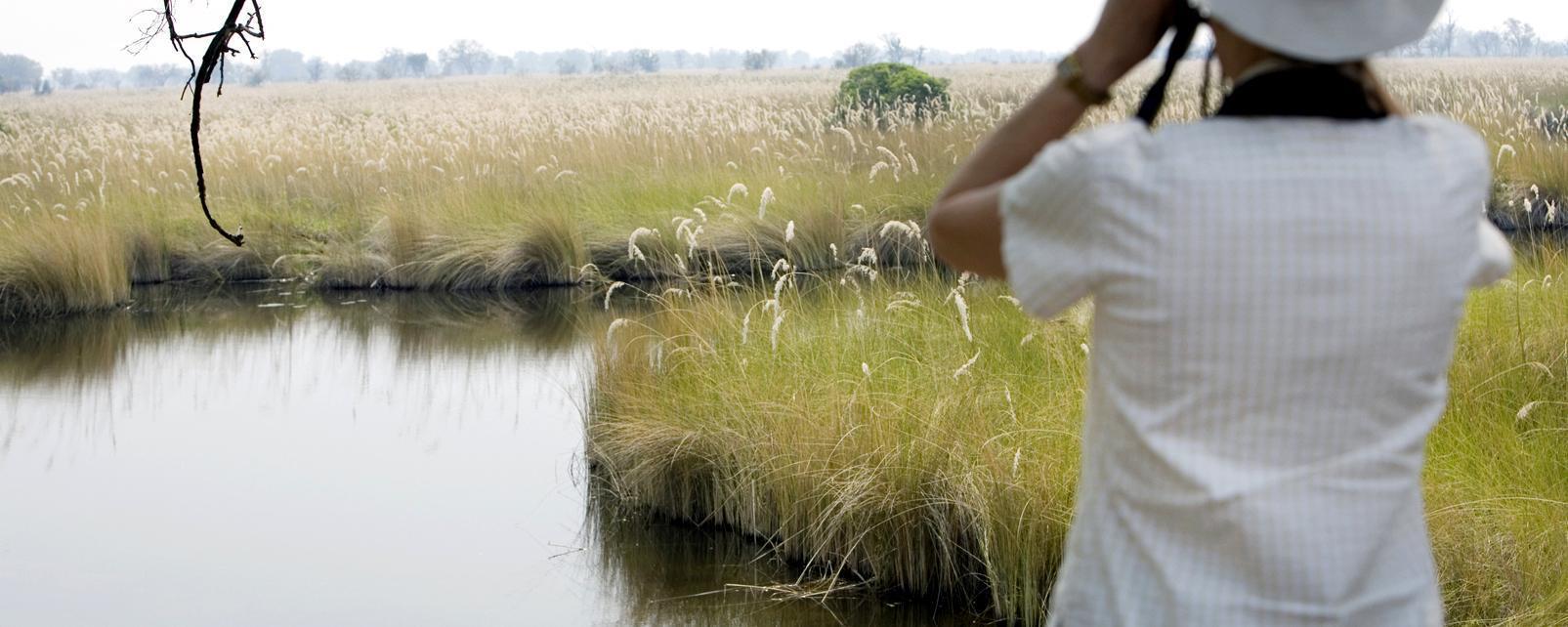 Afrique; Botswana; Francistown; lac; femme; arbre; paysage; nature;