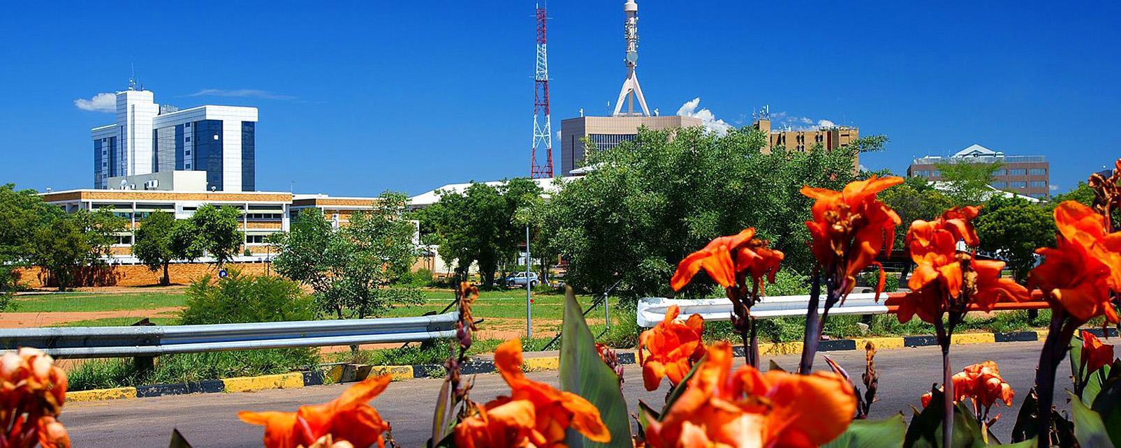 Afrique; Botswana; Gaborone; ville; fleur; bâtiment; route; arbre;