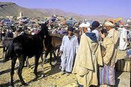 Antico passaggio obbligato per gli scambi commerciali tra il Marocco e l'Africa. La città è l'ultima tappa dal clima mite prima del deserto.