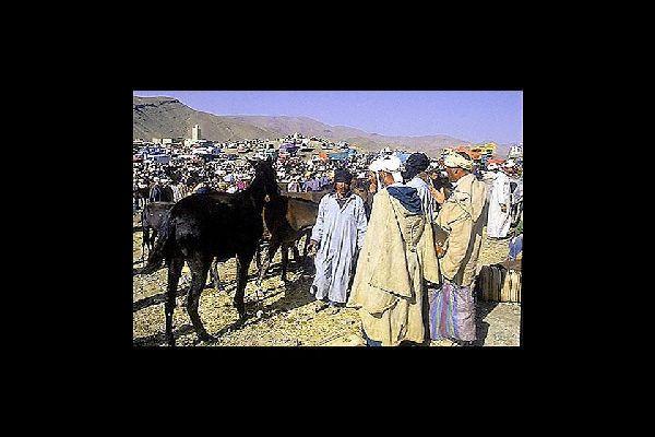 Autrefois, passage obligé pour les échanges marchandises entre le Maroc et  l'Afrique. La ville est la dernière étape douce avant le désert.