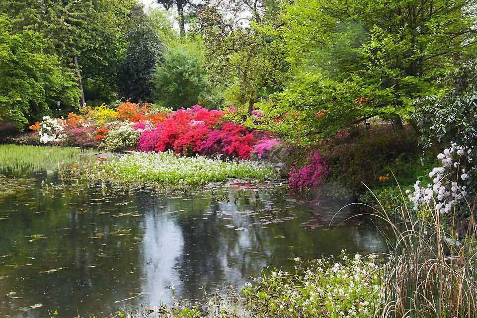 Questo giardino si può ammirare all'interno delle mura di cinta dell'università di Gand e possiede circa 10.000 specie di piante, con 40.000 m² di serre.